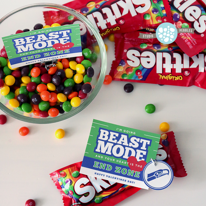 BeastModeValentine_Skittles_StudioPebbles_lrg2